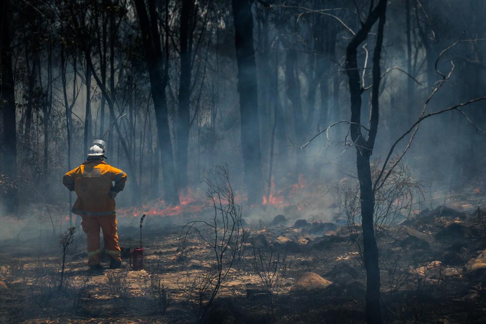 Bush Fire Devastating Impact - Roller Shutter People