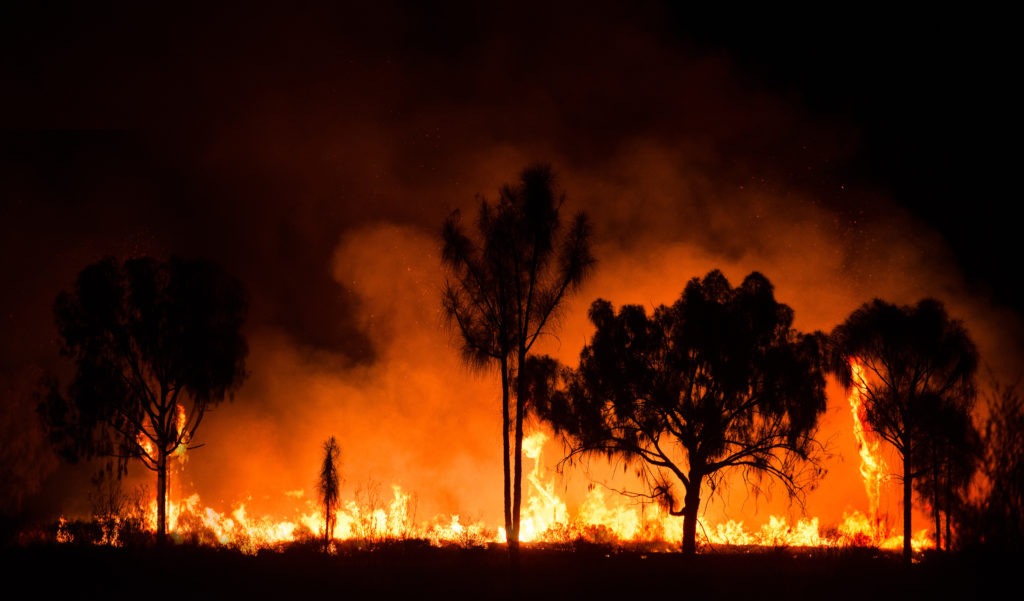 Bush Fire Climate Change Key Findings