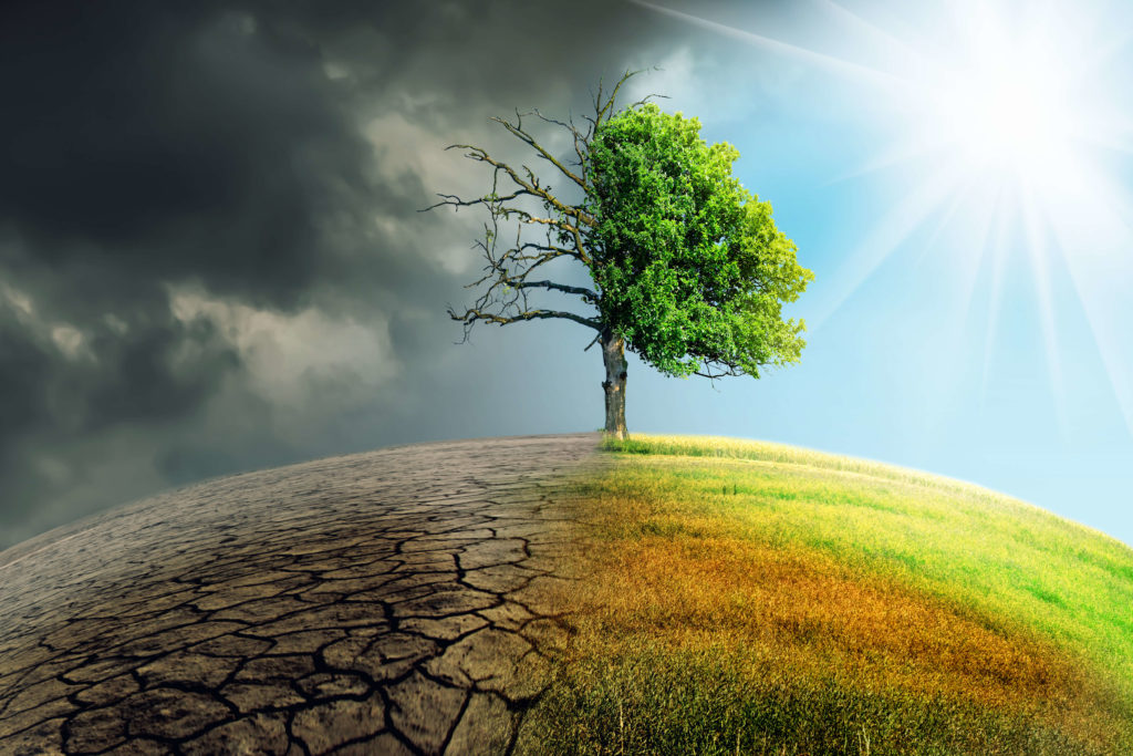 Climate Change Hard Evidence